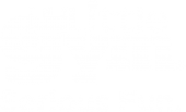 Logo The Little Gym South Africa